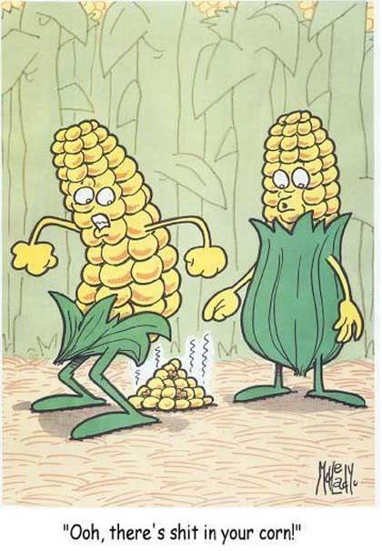 Corn cob up ass