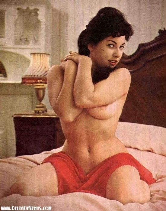 Nude busty hot vintage pornstar girls fake pics #5