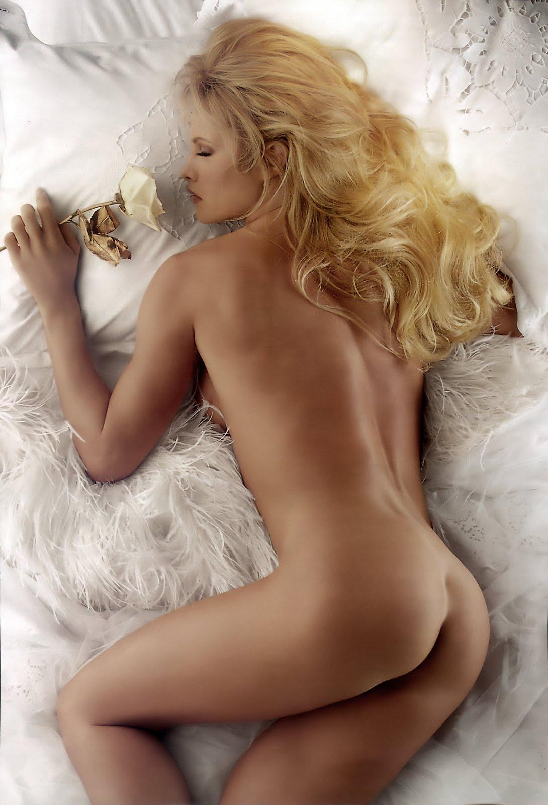 Wwe sable nude playboy