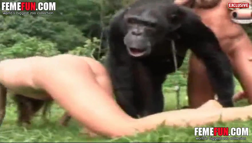 Asian girls having sex with chimps, amateur boy masturbating naked
