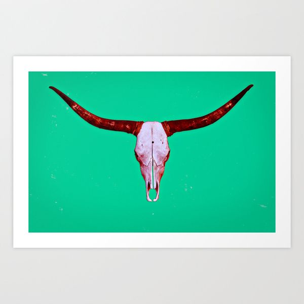 Texas longhorn moby dick
