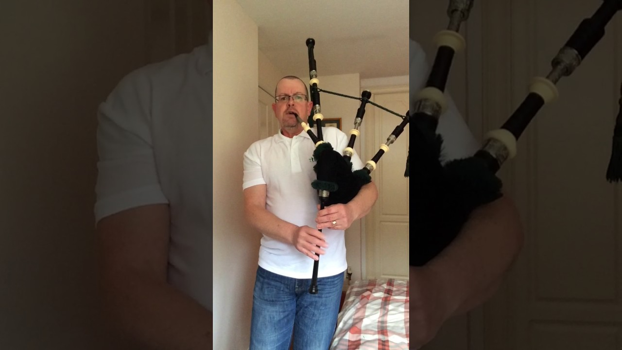 Piper piping perri