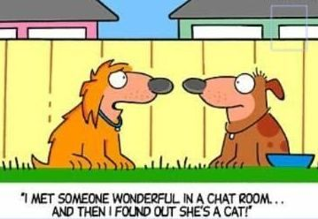 Funny chat rooms