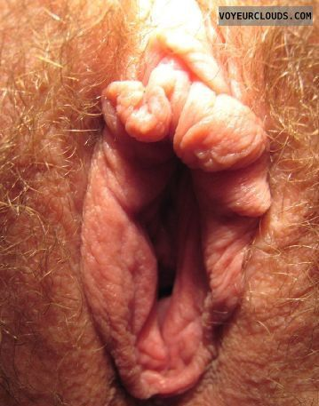 Blonde pubic hair close up pussy