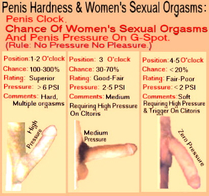 Penis inside vagina orgasm
