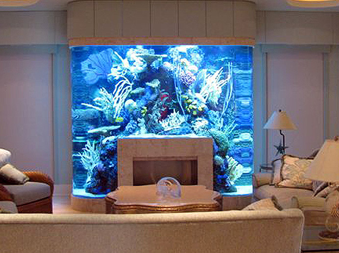 Fireplace fish tank
