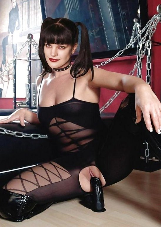 Pauley perrette fake porn