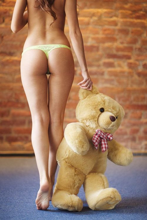 cock bear girl Hot teddy