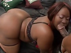 Ebony bbw big black ass