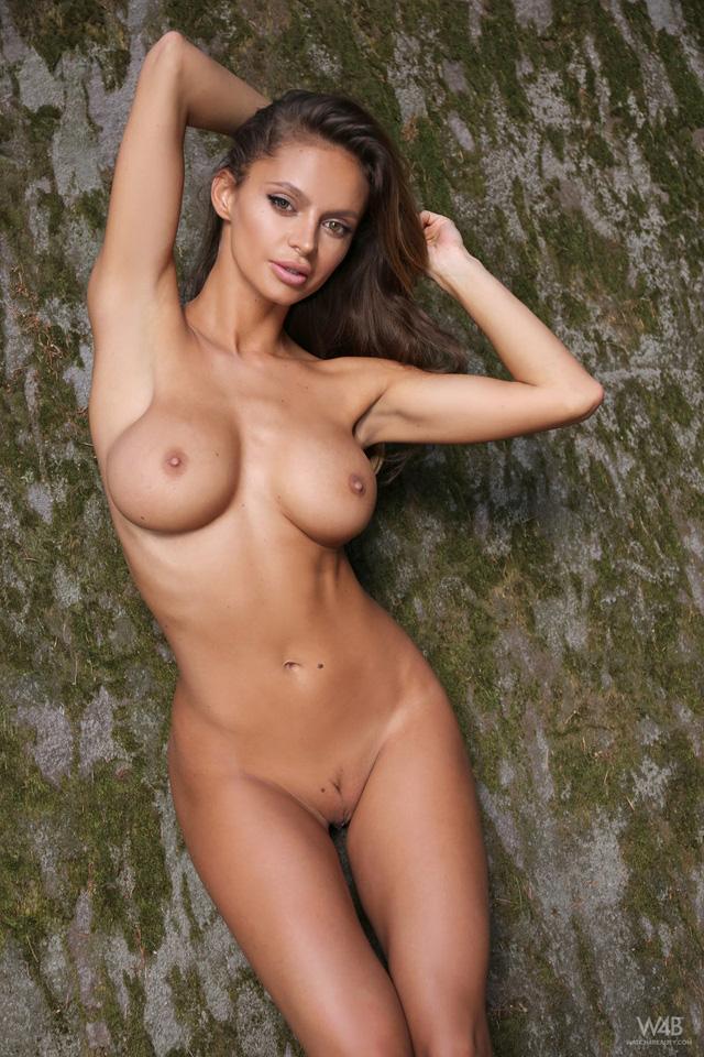 Dana harem nude