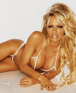 Pamela anderson lee naked