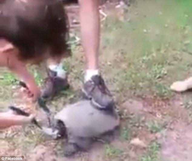 Girl being beheaded