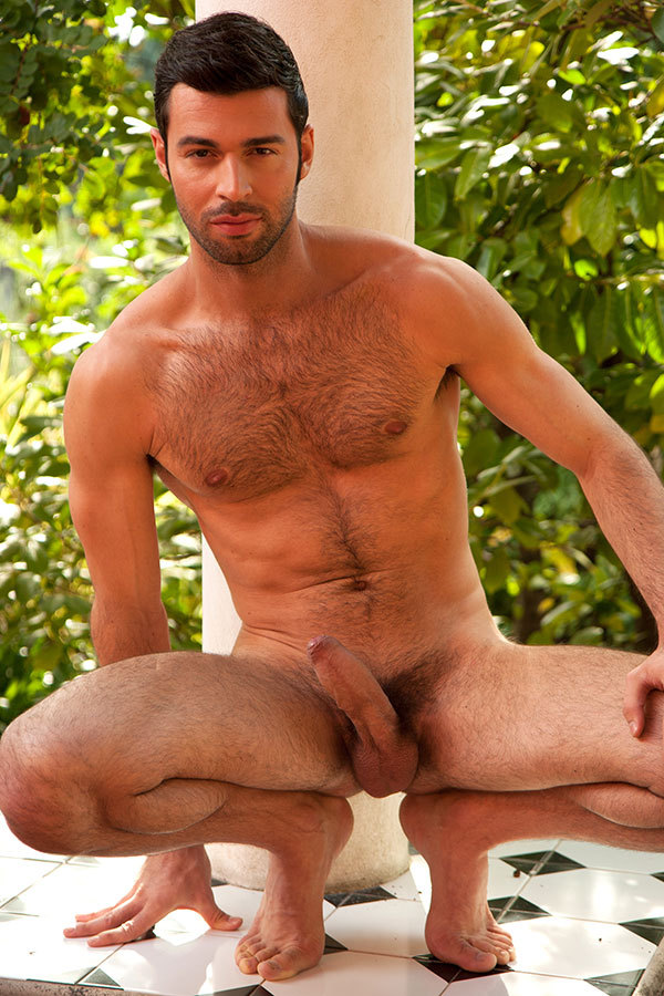 Handsome naked hairy gay men