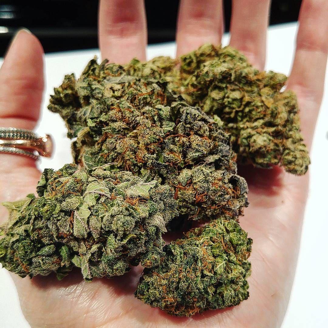 Weed marijuana sexy pussy