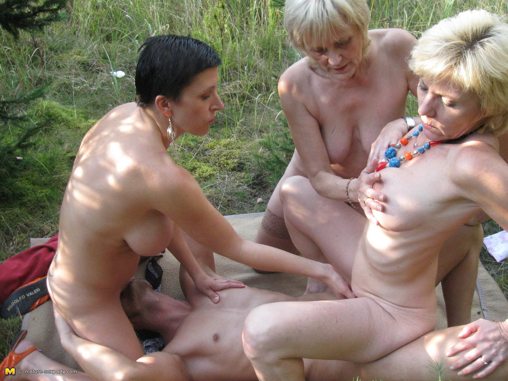 wifes outdoor sex party
