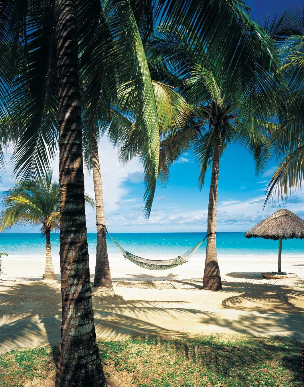 Beach caribbean jamaican porn