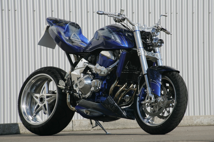 Kawasaki street fighter bikes