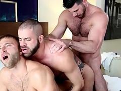 Free gay bear sex