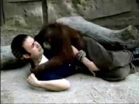 Monkey fucks girl