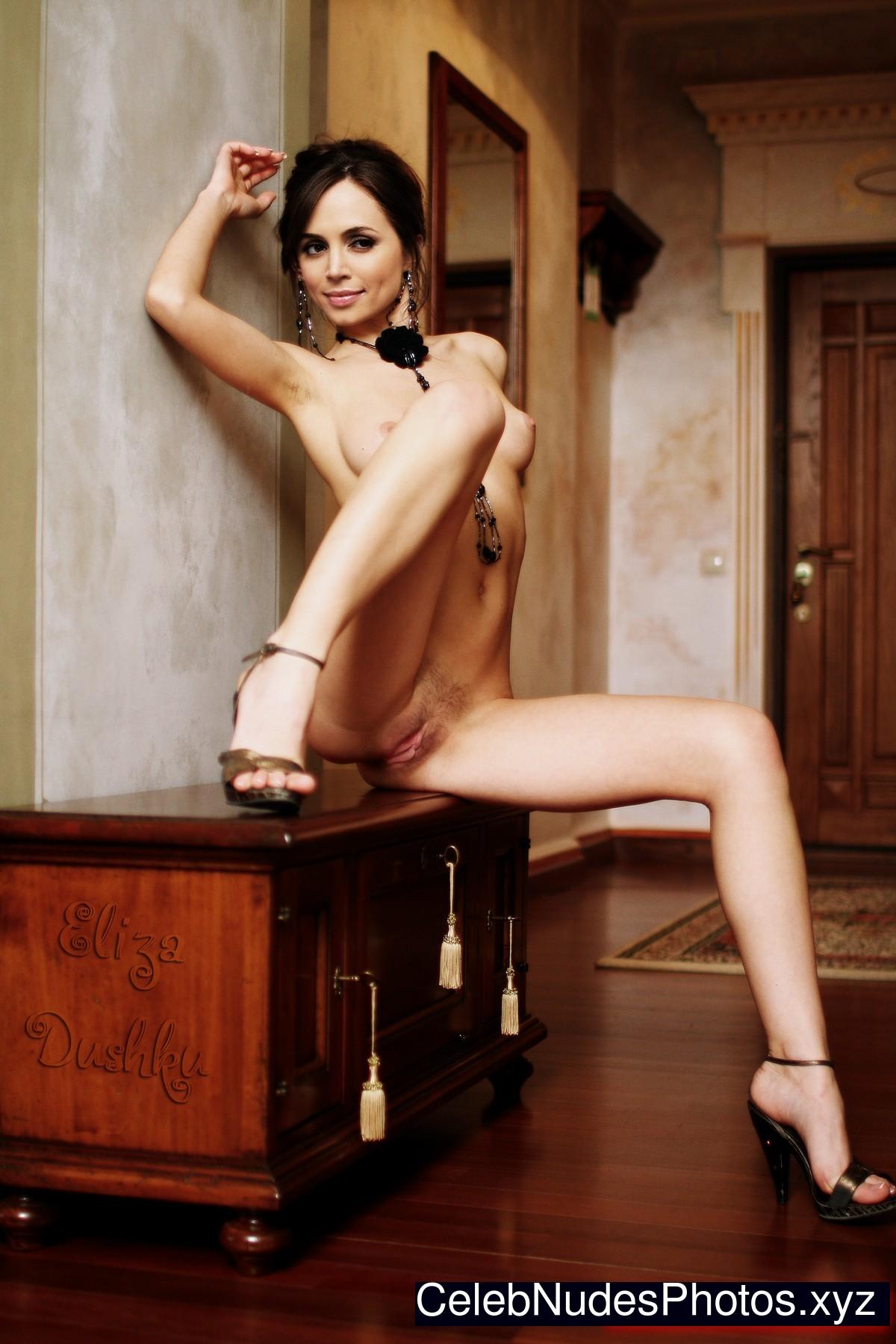 Eliza dushku nude fakes