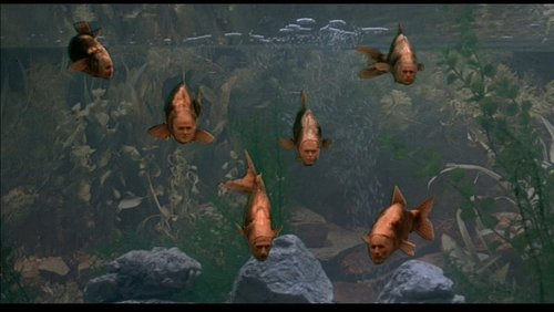Meaning of life monty python fish